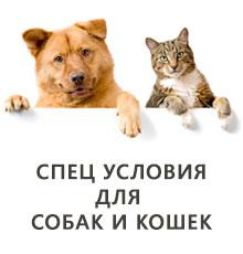 Спец условия для размещения объявлений приютов домашних животных